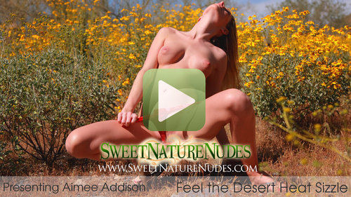 Aimee Addison in Feel the Desert Heat Sizzle